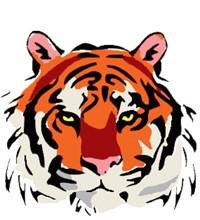 NCMS Tiger Logo
